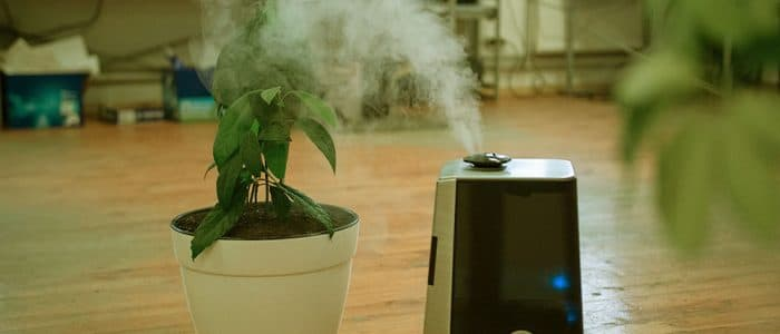 Best air purifier for smoke with Reviews and Buying guide in 2021