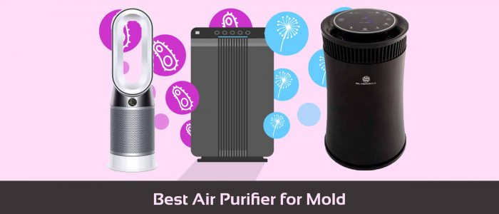 Top 12 Best Air Purifier for Mold | Experts Review