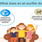 What-does-an-air-purifier-do