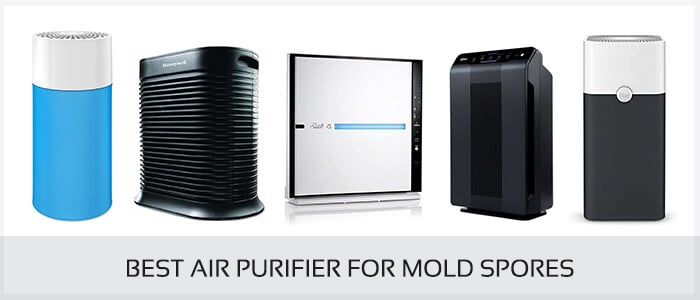 BEST AIR PURIFIER FOR MOLD SPORES