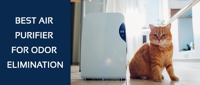 Best-Air-Purifier-for-Odor-Elimination