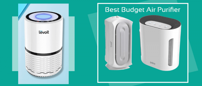 Best Budget Air Purifier – Top Rated Budget Air Purifier Reviews