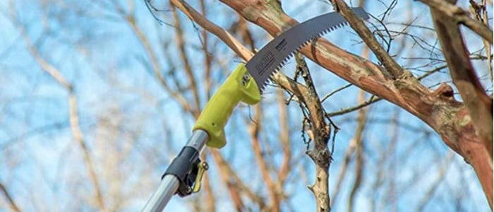 5 Best Professional Manual Pole Saw Options To Know About